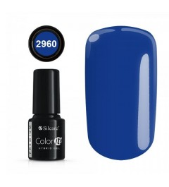NEW COLOR IT PREMIUM 6g N°2960
