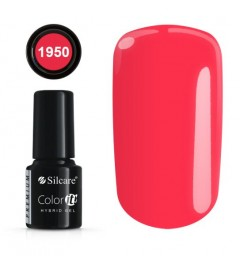 NEW COLOR IT PREMIUM 6g N°1950